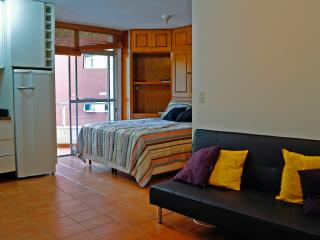 Studio near Paulista-pool & laundry - Taboao da Serra vacation rentals