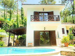 Fully Private Villa for rent Weekly or Daily - Gocek vacation rentals