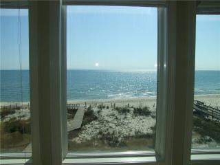 THREE DOLPHINS - Saint George Island vacation rentals