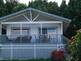 New Luxury Home Ocean View Hot Tub Walk Dine Shop - Hilo District vacation rentals