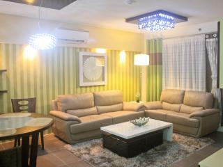 Brandnew Luxury 2 BR  City-Condo seaside - Visayas vacation rentals