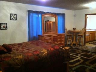 Cozy Studio Apartment in Town - Wrightwood vacation rentals