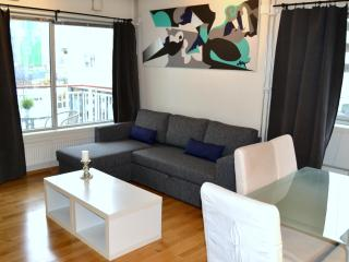 2/3 bedroom flat city centre - supercentral - Oslo vacation rentals