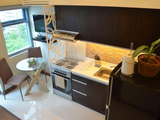 Fully Appointed Luxurious 1 Bedroom Greenbelt Loft - Makati vacation rentals