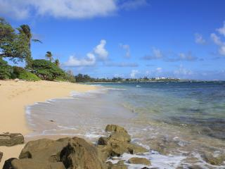 Large Ocean View Studio with Private Beach Access - Laie vacation rentals