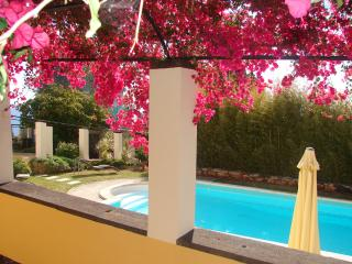 HIGH LIGHTS: VIEW, POOL, LOCATION, FAST WIFI, PARK - Madeira vacation rentals