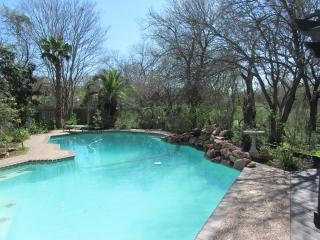 San Antonio Botanical Paradise with Private Pool - San Antonio vacation rentals