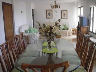 Torre Oceano Penthouse Five Bedrooms & Three Bathrooms - Sitio de Calahonda vacation rentals