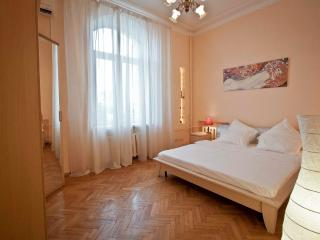ST.  2 minutes from Tverskaya str. - Moscow vacation rentals