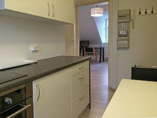 Nørrebro - The Cozy Neighbourhood - 478 - Zealand vacation rentals