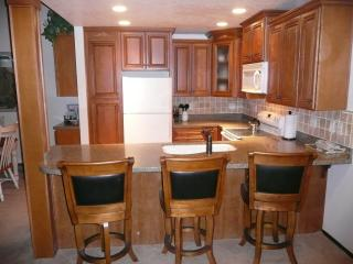 Condo Beautifully Remodeled, Near Jacuzzi, Shuttle - Mammoth Lakes vacation rentals
