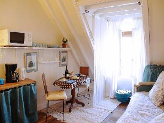 LAST MIN DISCOUNTS: darling 1BR in le marais - Paris vacation rentals