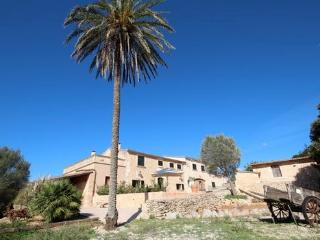 Lovely Finca for 11 people  in Manacor - ES-1075470-Manacor - Manacor vacation rentals