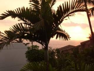 SALE $109.  Luxury Ocean Tropical Royal Sea Cliff - Kailua-Kona vacation rentals