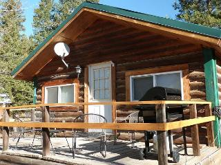 Great location in the heart of Island park - Eastern Idaho vacation rentals