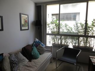 Best location & comfort apt in Sao Paulo - Taboao da Serra vacation rentals