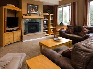 Terraces at EagleRidge - TRN01 - Steamboat Springs vacation rentals