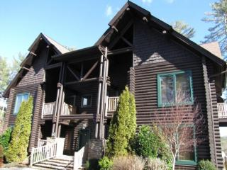 Indian Summer 63C - Blue Ridge Mountains vacation rentals