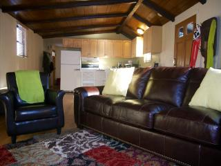 Breckenridge Family Ski Getaway - Sleeps 6-8 - Breckenridge vacation rentals