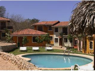 Pool area - Tamarindo 1 Bd condo-walking distance to the beach - Guanacaste - rentals
