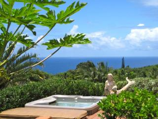 Tanquil Vista; Ocean View Private Tropical Grounds - Kihei vacation rentals