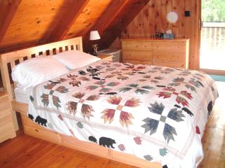 Beauiful and Secluded Whiteface Mountain Chalet - Jay vacation rentals