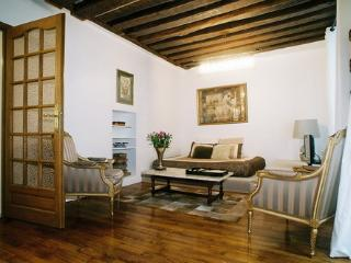 TOP LUXURY apartment next to la sorbonne, with jaccuzi - Paris vacation rentals