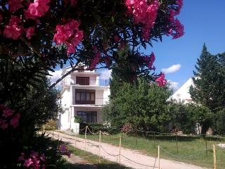 Comfortable apartment Miky 2 (3pax - seaside) in Novalja - Novalja vacation rentals