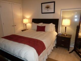 Lux 1BR near White House - District of Columbia vacation rentals