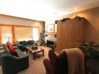 Elk Run Condominiums - Frisco vacation rentals