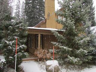BLUE SPRUCE HIDEAWAY TUCKED IN THE TREES WITH SPRING MOUNTAIN AMENITIES - McCall vacation rentals