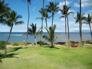 Hale Kai O'Kihei 1 Bedroom 202 - Kihei vacation rentals