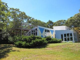 Updated Contemporary Cape (1680) - Wellfleet vacation rentals