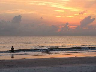 18 Gulf Blvd. Pets Welcome - Florida North Central Gulf Coast vacation rentals