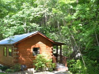 Relaxation: - Smoky Mountains vacation rentals