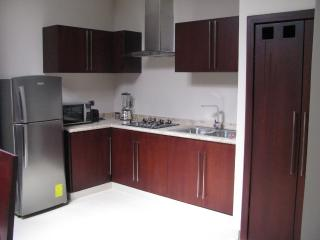 Spacious, modern condo, minutes from Centro - Cuenca vacation rentals