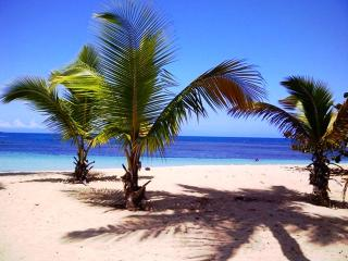 Apt In Residence On Las Ballenas Beach - Las Terrenas vacation rentals