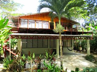 Big Beach House, OSA Peninsula, YOGA and SURF - Osa Peninsula vacation rentals
