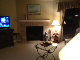 Fully Furnished 3rd floor Condo Sweet Boulder,Co. - Boulder vacation rentals