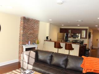 Brand new, one bedroom, beautiful open concept apartment in the heart of downtown Boston! - Boston vacation rentals