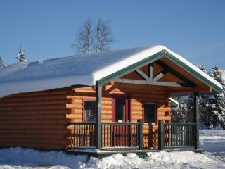Rocky Mountain log cabin adventure. - Crescent Spur vacation rentals