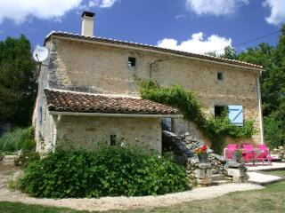 Beautifully renovated 600 year old cottage - Varaignes vacation rentals