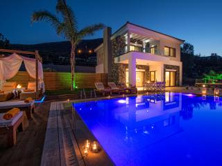 Luxurious villa with private pool in Crete - Crete vacation rentals
