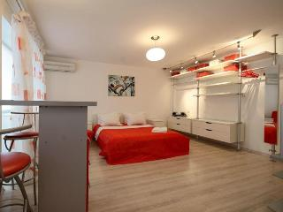 Stylish Euro Studio, fresh modern design in center - Kiev vacation rentals
