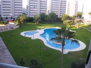Coastal Apartment/ Costa Blanca Spain - El Campello vacation rentals