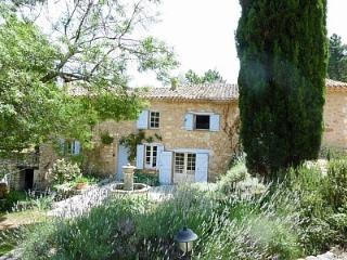 Luxurious 18th Century Bastide in an Olive Grove! - Salernes vacation rentals