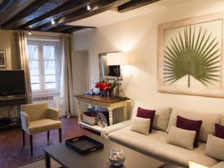 Napoleon Eiffel - Riche Eiffel Tower 2 bedroom apartment - Paris vacation rentals