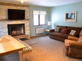 Recently Remodeled 3 Bedroom, 2 Bath Mountain Villa Condo - Walk to Waterpark and Boyneland Ski Run - Boyne Falls vacation rentals