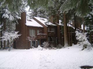 Snowater Condo #20 -This nicely decorated 2 Story Condo - Sleeps 6 - Close to Community Amenities! - Glacier vacation rentals