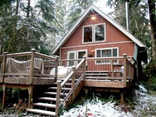 Snowline Cabin #90 - A Comfy Country Cabin - Maple Falls vacation rentals
